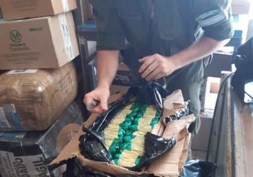 Enviaron hojas de coca en 100 paquetes