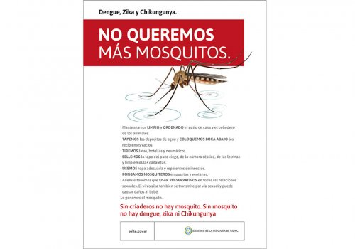 Dengue: Vigilancia intensificada en Salta