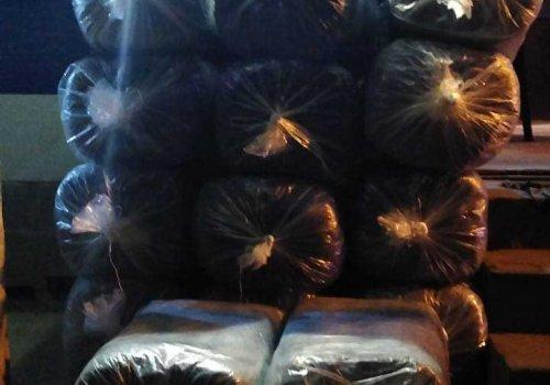La Policía incautó más de 300 kilos de hojas de coca